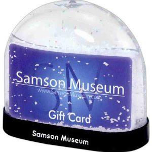 Gift Card / Business Card Insert Snow Globe