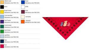 Personalized Triangle Bandana