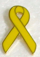 yellow awareness lapel pins Support our troops