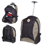 Trek Backpack / Trolley Back Pack