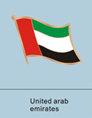 Emirati flag, Emirati flag pin, patriotism, patriotic, lapel pin, flag pin,...