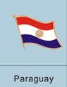 Paraguay Flag Pin