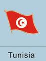 tunisian flag, tunisian flag pin, patriotism, patriotic, lapel pin, flag pin,...