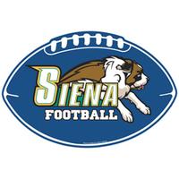 football, sports, car sign, car decal, football decal, helmet, football helmet
