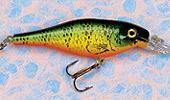 shad, fishing, lure, deep shad, minnow, bait, tackle