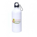 22 oz. Stainless Steel Sports Bottle