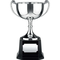 Endurance Nickel Plated Award Cup