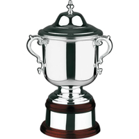 Plain Supreme Trophy Award