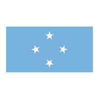 Micronesia Flag Temporary Tattoo