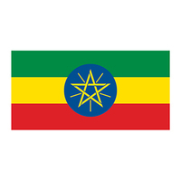 Flag of Ethiopia Temporary Tattoo