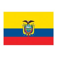 Flag of Ecuador Temporary Tattoo