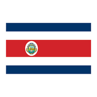 Flag of Costa Rica Temporary Tattoo