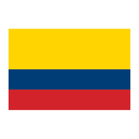 Flag of Colombia Temporary Tattoo