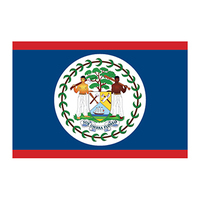 Belize Flag Temporary Tattoo