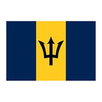 Barbados Flag Temporary Tattoo