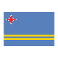 Aruba Flag Temporary Tattoo