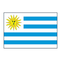 Uruguay Flag Temporary Tattoo