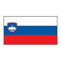 Slovenia Flag Temporary Tattoo