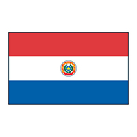 Paraguay Flag Temporary Tattoo