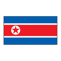 North Korea Flag Temporary Tattoo