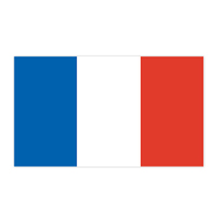 France Flag Temporary Tattoo