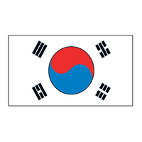 Korea Flag Temporary Tattoo