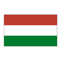 Hungary Flag Temporary Tattoo
