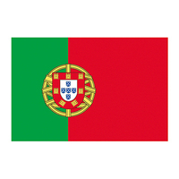 Portugal Flag Temporary Tattoo
