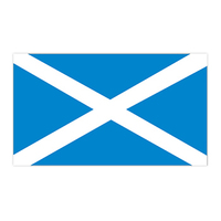 Scotland Flag Temporary Tattoo