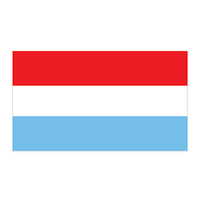 Netherlands Flag Temporary Tattoo