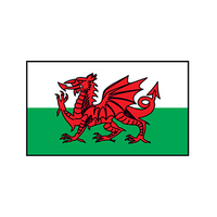 Wales Flag Temporary Tattoo