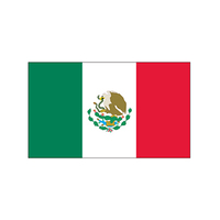 Mexico Flag Temporary Tattoo