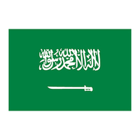 Flag of Saudi Arabia Temporary Tattoo
