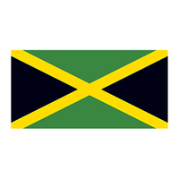 Flag of Jamaica Temporary Tattoo