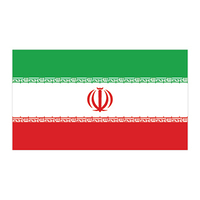Iran Flag Temporary Tattoo
