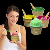 Ice Cream Bowl and Spoon Set