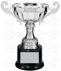 7 3/8 inch Silver Completed Metal Cup Trophy