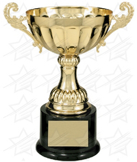 8 1/2 inch Gold Completed Metal Cup Trophy