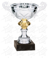 9 inch Silver/Gold Completed Metal Cup Trophy on Marble Base