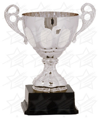 11 inch Silver Completed Metal Cup with Plastic Base