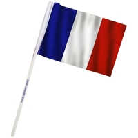 "4"" x 6"" France Imprinted Staff Polyester Stick Flags"