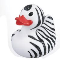 Rubber Safari Zebra Duck