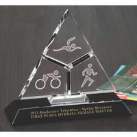 Tricera Award