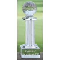 Ashford Tower Award