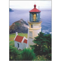 Haceta Head Light