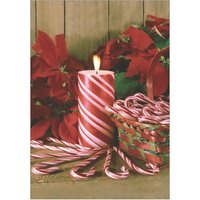 Candy Cane and Poinsettias
