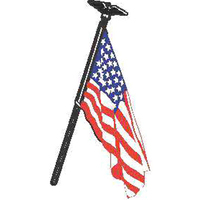 Eagle USA flag kit