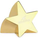 Star Struck Paperweight