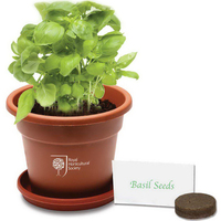 Grande Terra Cotta Planter Kit