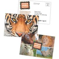 "4"" x 6"" Lenticular Postcard w/ Full-Color Front/1-Color Back"